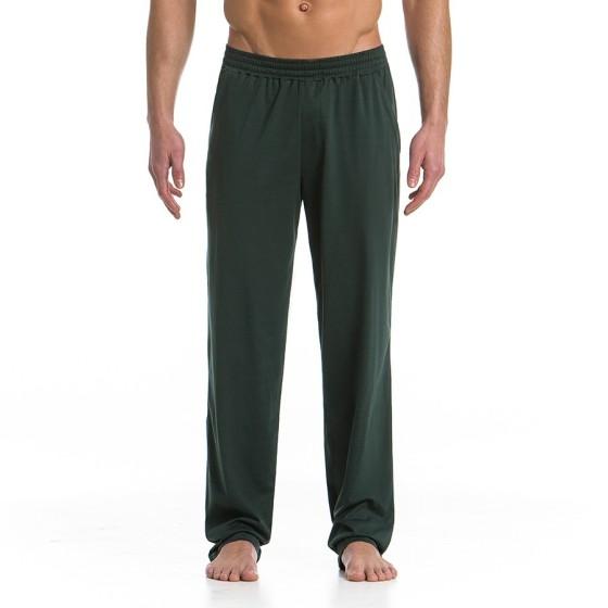 Ανδρικό παντελόνι φόρμας Πράσινο