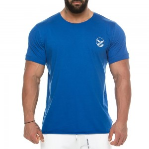 Men's t-shirt 2157_blue