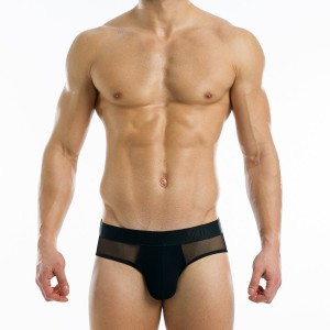 TRANSPARENT BRIEF