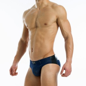 Indigo brief